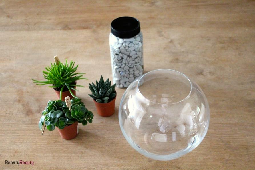 DIY plant terrarium benodigheden